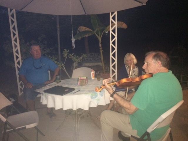violin.JPG - 95kB