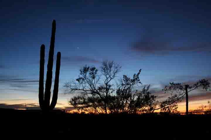 sunsetstarweb.jpg - 39kB