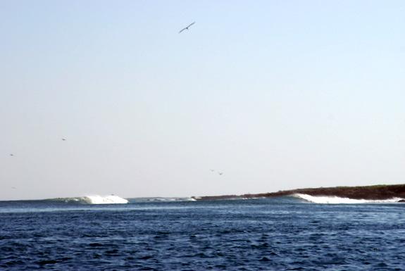 Bajanomad Mag Bay Surf Powered By Xmb