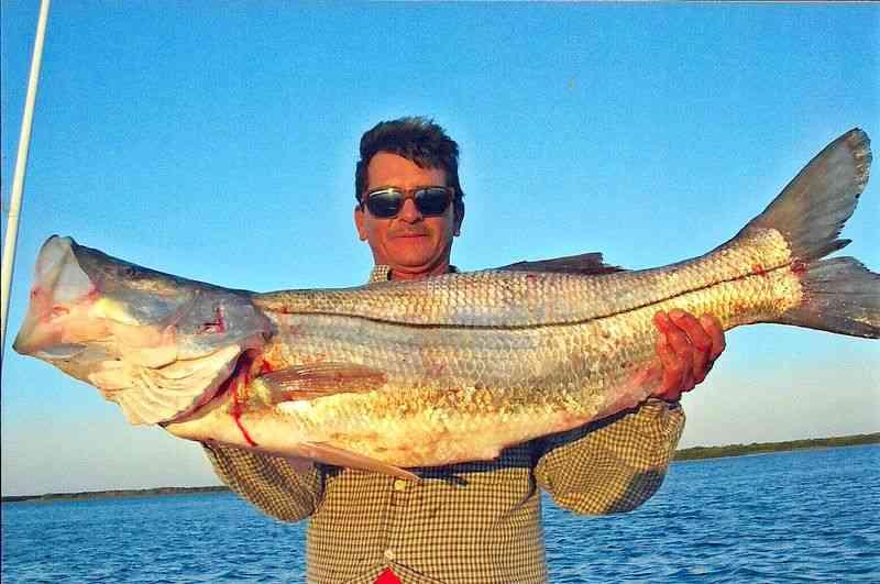 Bajanomad Fishing Mangroves Puerto Adolfo Lopez Mateos